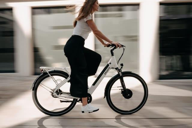 particulier e bike leasen